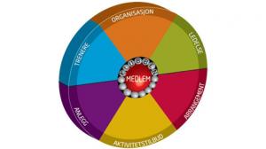 Organisasjonshjul