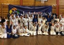 Fra Judofestivalen i Ålesund. FOTO: Sunniva W. Kui