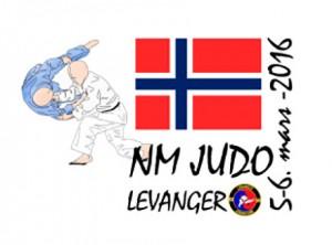 nm-2016-logo-levanger